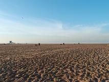 Pusty Dockweiler plaży stanu park Fotografia Royalty Free