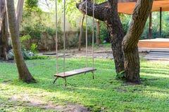 Pusty drewniany huśtawkowy obwieszenie od wielkiego drzewa z światłem słonecznym Fotografia Stock