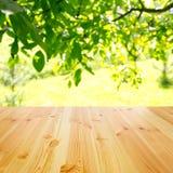 Pusty drewniany stół obraz royalty free