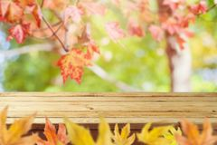 Pusty drewniany stół nad jesieni natury bokeh obrazy royalty free