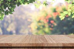 Pusty drewniany stół nad zamazanym jesieni drzewem opuszcza z bokeh b obrazy royalty free