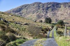 Pusty Drogowy Irlandia 0016 Obraz Royalty Free