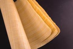 Pusty Egipski papirus Fotografia Stock