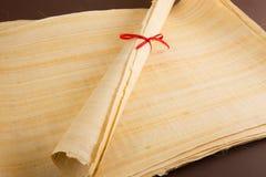 Pusty Egipski papirus Obrazy Stock
