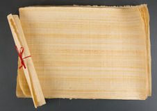 Pusty Egipski papirus Zdjęcia Stock
