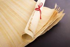 Pusty Egipski papirus Obraz Stock
