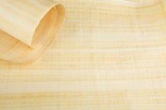 Pusty Egipski papirus Zdjęcie Royalty Free
