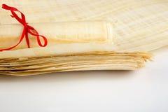 Pusty Egipski papirus Zdjęcie Stock