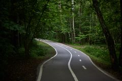Pusty Footpath z rower ścieżką w Zielonym lesie Zdjęcia Royalty Free