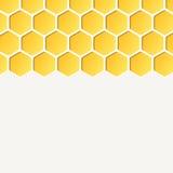 Pusty honeycombs tło Wektor, dla reklamować ilustracji