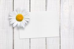Pusty kartka z pozdrowieniami i chamomile na białym drewnie obrazy stock