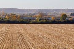Pusty Kukurydzany pole Obrazy Stock