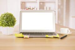 Pusty laptop i roślina fotografia stock