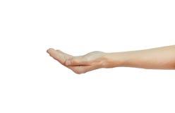 Pusty męski ręki mienie odizolowywający na bielu Obraz Stock