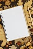 pusty notatnik Obrazy Stock