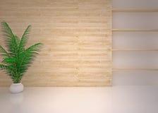 Pusty nowożytny wewnętrzny żywy pokój, hol Obrazy Stock