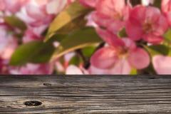Pusty odgórny drewniany stół Obraz Stock