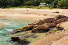 Pusty plażowy Praia robi Cepilho, Trindade, Paraty, Brazylia obrazy stock