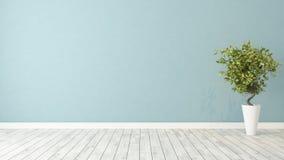 Pusty pokój z rośliną Zdjęcie Royalty Free