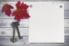 Pusty prześcieradło papier i czerwień opuszcza na drewnianym tle Obrazy Stock