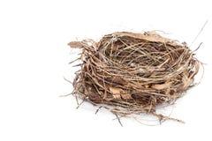 Pusty ptaka gniazdeczko odizolowywający na bielu obrazy royalty free