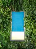 Pusty signboard reklamuje z pokrywy zieleni ulistnieniem zdjęcie stock