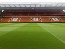 pusty stadion futbolowy z zieloną trawą zdjęcie royalty free