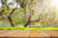Pusty wieśniaka stół przed zielonej wiosny bokeh abstrakcjonistycznym tłem produktu pokaz i pinkinu pojęcie obrazy stock
