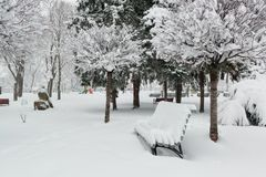 Pusty zima park obrazy stock