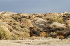 pustynia Zdjęcia Stock