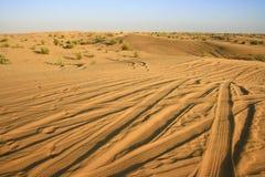 pustynia Zdjęcia Royalty Free