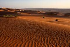 pustynia Obraz Royalty Free