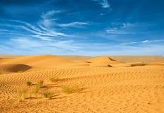 Pustynia afryka pólnocna Zdjęcie Stock