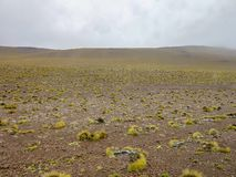 Pustynia Atacama, Chile fotografia royalty free
