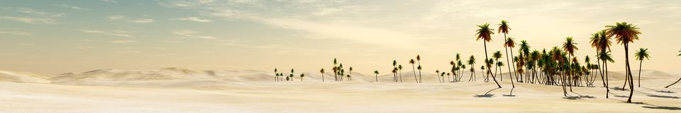 pustynia i drzewka palmowe Zdjęcia Royalty Free