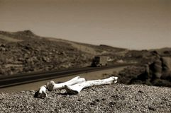 pustynia kości. Zdjęcie Royalty Free