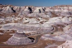 pustynia malująca Zdjęcie Stock