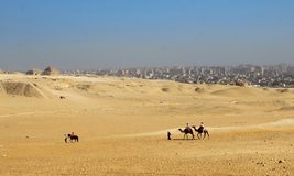 pustynia straciła Fotografia Royalty Free