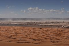 Pustynna burza w saharze Obraz Royalty Free