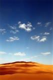 pustynna diuna Zdjęcia Royalty Free