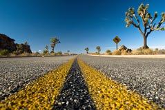 pustynna droga Obraz Stock