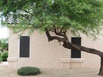 Pustynna kształtuje teren Sonoran pustynia, Arizona zdjęcie stock