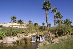 pustynna oaza Obrazy Royalty Free