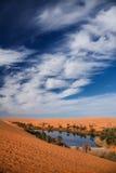 pustynna oaza Obraz Stock