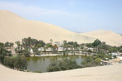 pustynna oaza Zdjęcie Royalty Free