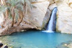 Pustynna oaza, Chebika, Tunezja Zdjęcia Royalty Free