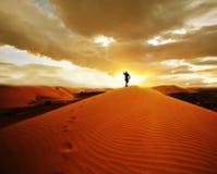 pustynna podwyżka Obraz Royalty Free