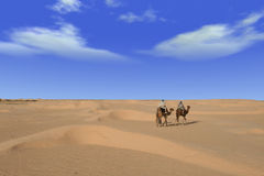 pustynna przejażdżka Zdjęcia Stock