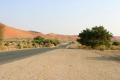 pustynna road Obrazy Stock