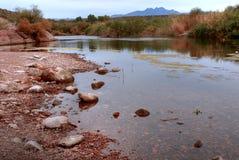 pustynna rzeka Zdjęcia Royalty Free